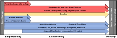Chart showing factors influencing morbidity and mortality in the childhood cancer survivor.